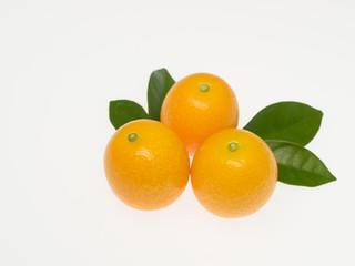 金柑の果実と葉