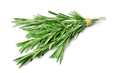 Twig of rosemary