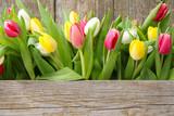 Tulpen - Fine Art prints