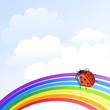 illustration with rainbow and ladybug