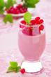 Raspberry dessert panna cotta, selective focus.