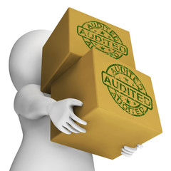 Audited Boxes Mean Company Finances And Accounts Are Assessed