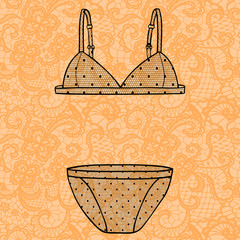 Lacy sexy bra and panties. Vector illustration.