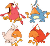 a set of birdies cartoon