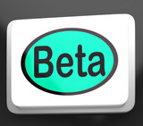 Beta Button Shows Development Or Demo Version