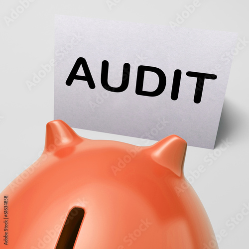 Audit Piggy Bank Shows Inspect Analyze And Verify