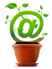 Growing mail symbol like plant with leaves in flower pot