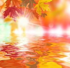 herbststimmung Wasser Spiegelung der Blätter