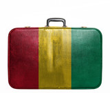 Vintage travel bag with flag of Guinea