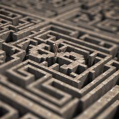 Dollar inside a maze