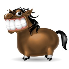 cavallo smile