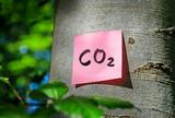 CO2-Bilanz Klimabilanz Ökologischer Fußabdruck