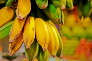 Erntefrische Bananen im Verkauf