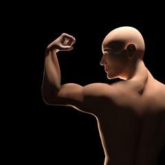 Braccio muscoloso piegato