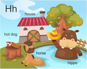 Alphabet.H letter.hot dog,house, hat ,horse,hippo.