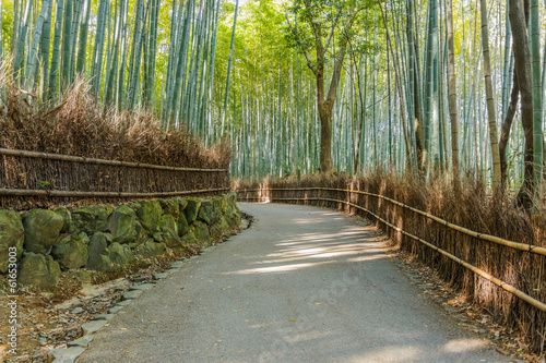 Chikurin-no-Michi (Bamboo Grove) at Arashiyama in Kyoto