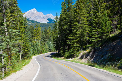 Banff national park road, Alberta, Canada
