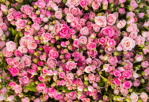 Deurstickers Roses Abstract background of roses.