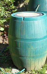 Connected Rain Barrels
