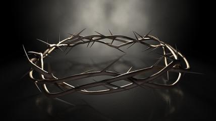 Crown Of Thorns On Dark