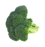 Broccoli Floret On White Background