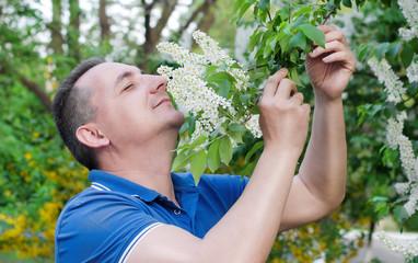 Цветет белая черемуха. Мужчина с наслаждением  нюхает ее запах
