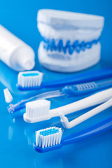 toothbrushes and individual plaster dental molds