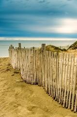 Dunes au bord de la Méditérranée.