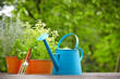 concept of gardening and hobby