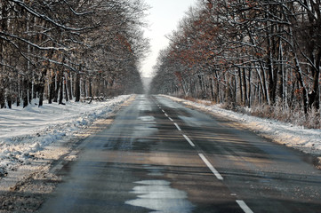 Frozen road in the winter at wooded country, Ludogorie, Bulgaria