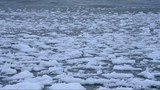 Ice on Lake Balaton, Hungary