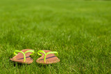 Closeup of bright flip flops on green grass