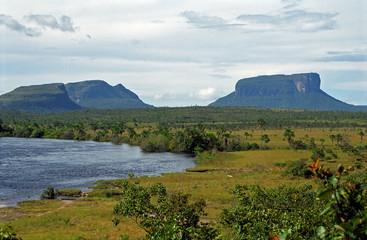 Auyantepui, Canaima National Park, Venezuela