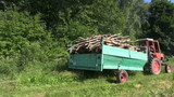 Tractor with trailer fully loaded with tree firewood logs