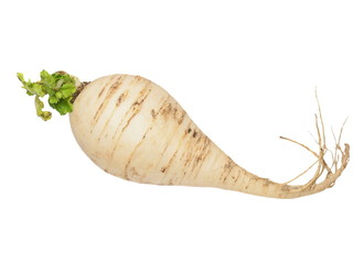 Fresh turnip with leaves isolated on white