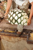 Agave tequila production