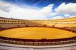 Bullfight arena (Plaza de toros de la Real Maestranza) Sevilla - 61691228