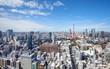 Skyline of Tokyo , Japan at Tokyo Tower