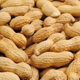 groundnut background