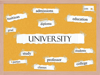 University Corkboard Word Concept