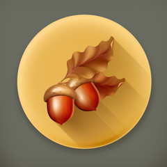 Acorns, long shadow vector icon