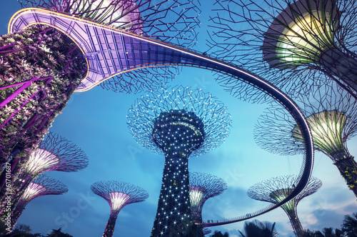 Foto op Canvas Singapore Supertree Grove in the Graden by the Bay in Singapore