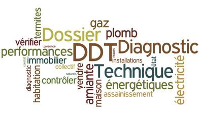 Nuage de mots : DDT