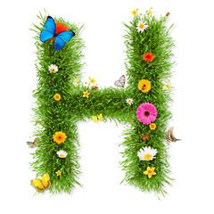 "Spring letter ""H"""