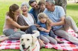Cheerful extended family sitting on picnic blanket at park