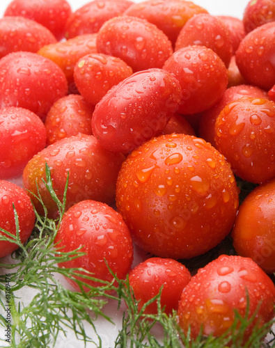 Fresh, delicious and tasty tomatoes and fennel as the example of