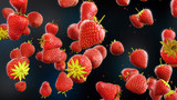 Fliegende erdbeeren isoliert -  strawberry on dark backround