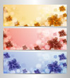 Abstract Flower Vector Background / Brochure Template / Banner