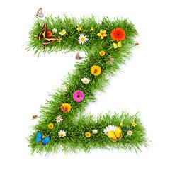 "Spring letter ""Z"""