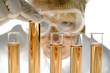 Wissenschaftler im Labor hält Reagenzglas